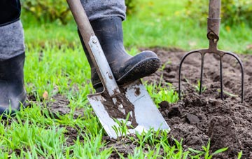 Becontree garden maintenance companies