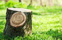 Becontree tree stump removal services
